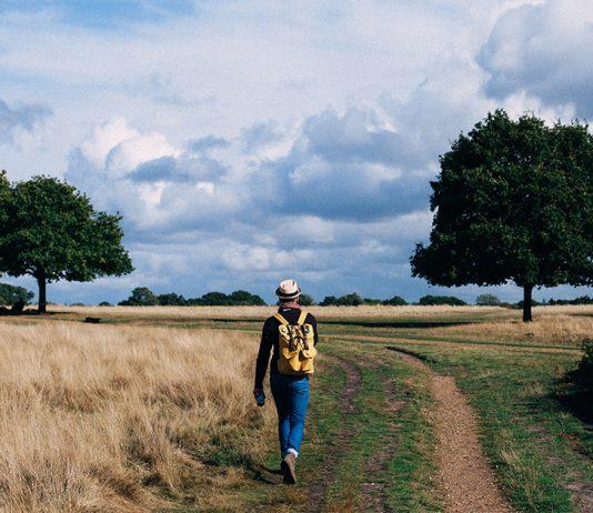 nature-walk-534x462 Úvod