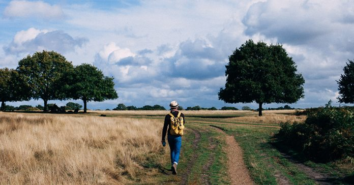 mlady muz sa prechadza na poli a v lese